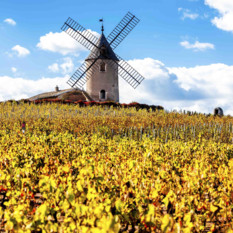 France_windmill_landscape