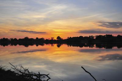 South Luangwa