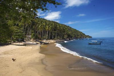 la pisota beach in jalisco