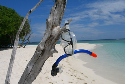 Snorkel hanging on a tree