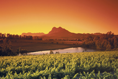Sunset View across Winelands