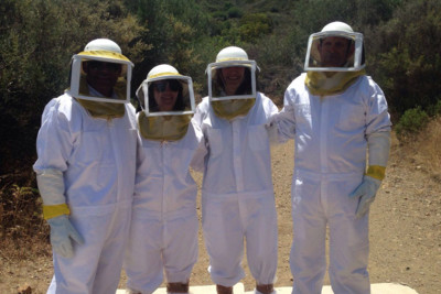 Bee Keeping, Cyprus