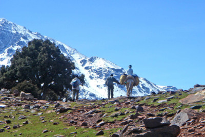 trekking atlas mountains