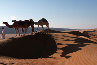 camel_safari_oman_desert_nights_camp