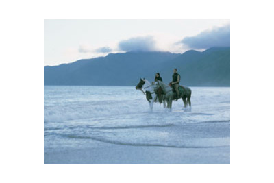 Wharekauhau_horses_new_zealand