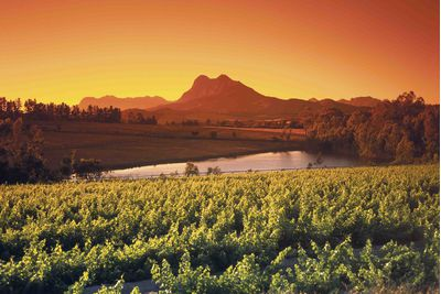 Cape Town and The Winelands, South Africa