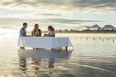 tasmania oyster farming