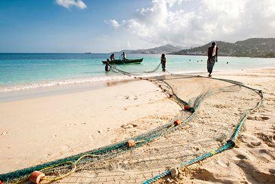 fishing on a beach in grenada