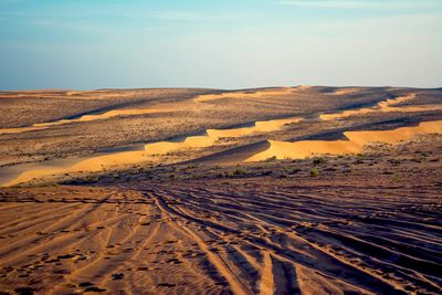 wahiba sands desert adventure