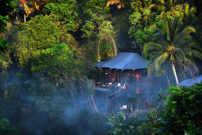 private tent in the jungle canopy at Capella Ubud