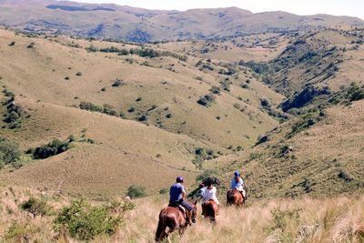 Horse safari in Andalucia