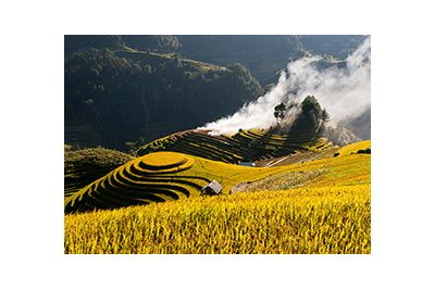 Sapa Fields
