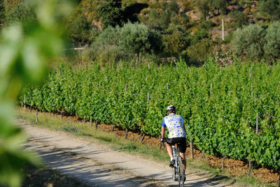 cycling through spain