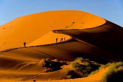 walking sand dune
