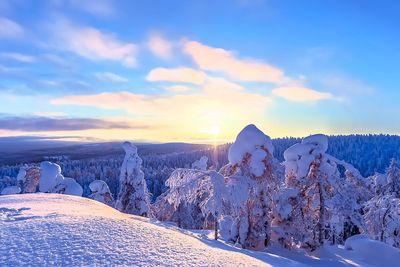 snowly finland