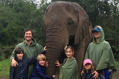 Pletternberg Bay elephant south africa