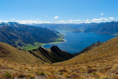 new zealand hasst pass