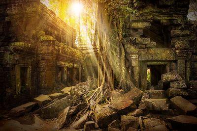 cambodia ta prohm tomb raider