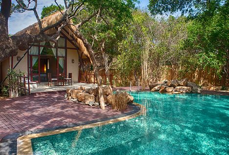jungle beach swimming pool