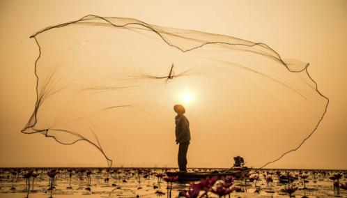 Inle Lake fisherman and net in Myanmar