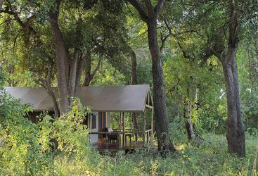 Shinde guest tent exterior in woodland
