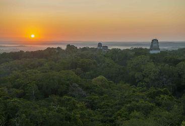 Tikal Temples Sunset