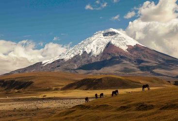 The snow capped peaks of The Andes