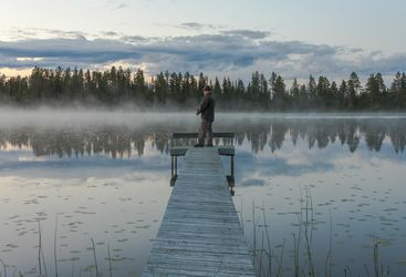 Summer Fishing, Swedish Lapland