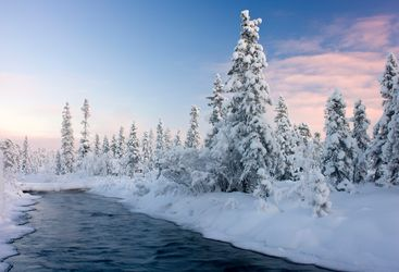 Snow covered scenery