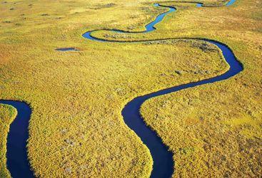 Aerial of Delta