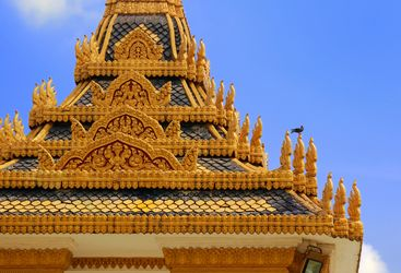 Phnom Penh Roof with Bird