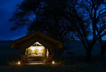 Tent night view