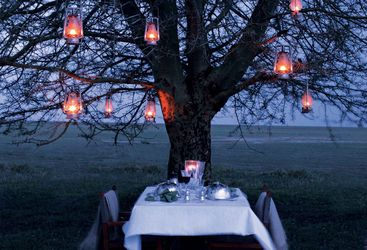 Bush dinner at Chem Chem, luxury Lodge in Tanzania