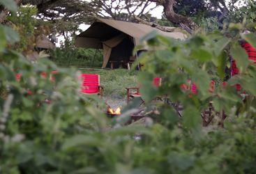 Lemala Ngorongoro, luxury tents in Tanzania