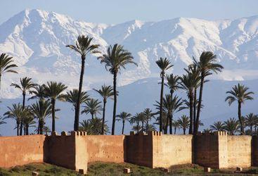 atlas mountains palm trees