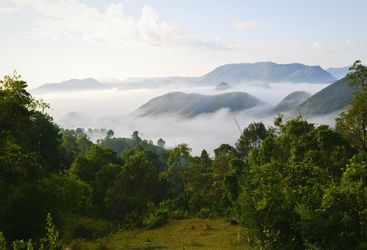Burmese morning landscape