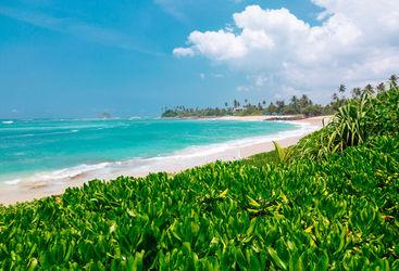 Sri Lanka ocean shore