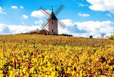 France windmill