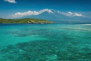 Menjangan, Bali