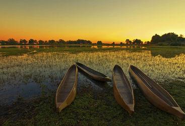 mokoro dugout canoes