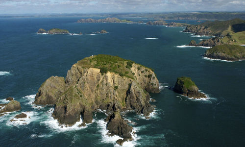 Aerial view of the Island Bay