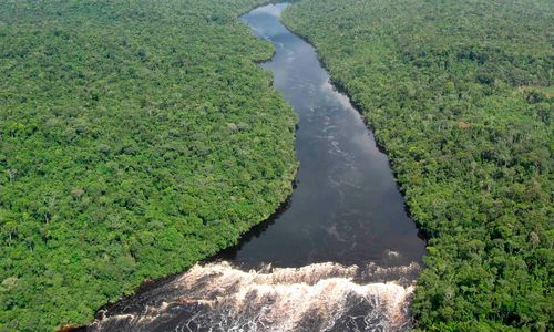 Amazon River Aerial View