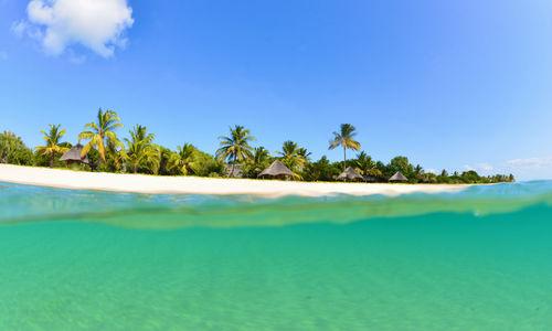 Split Shot, Bazaruto Island