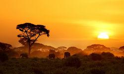 Kenya sunset