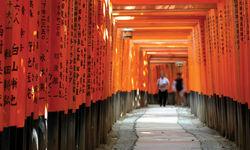 Torri gate, Japan