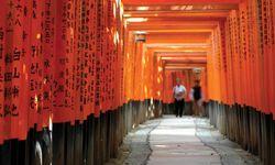 Orange Walkway
