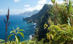 Coastline in Madeira