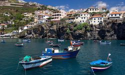 Fishing port in Madeira