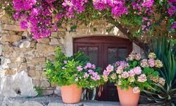 Cliento house, Italy