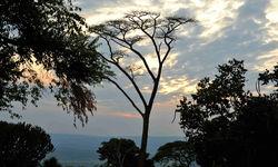 Sunset at Akagera National Park